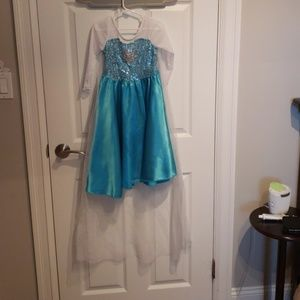 Elsa costume dress only